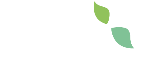 Beetle Environmental Solutions